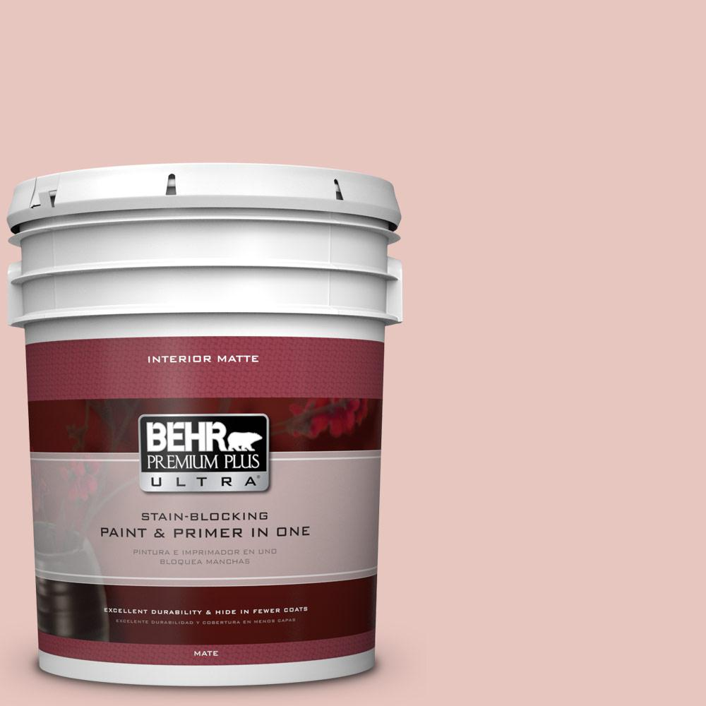 5 gal. #S160-1 Iced Cherry Matte Interior Paint