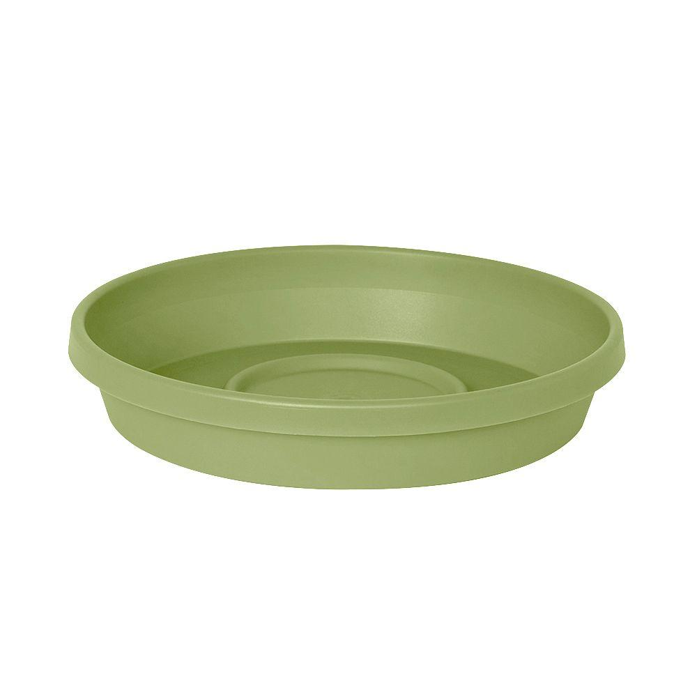 null Terra 5.75 in. x 1.06 in. Lotus Green Plastic Tray (Case of 24)