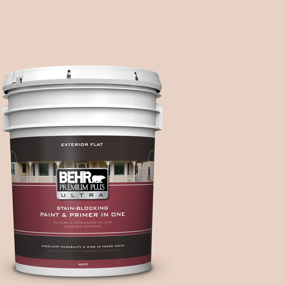 5-gal. #S200-1 Conch Shell Flat Exterior Paint