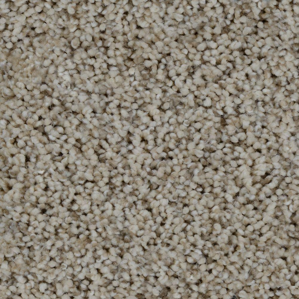 Trendy Threads I Color Hamilton Texture 12 Ft Carpet