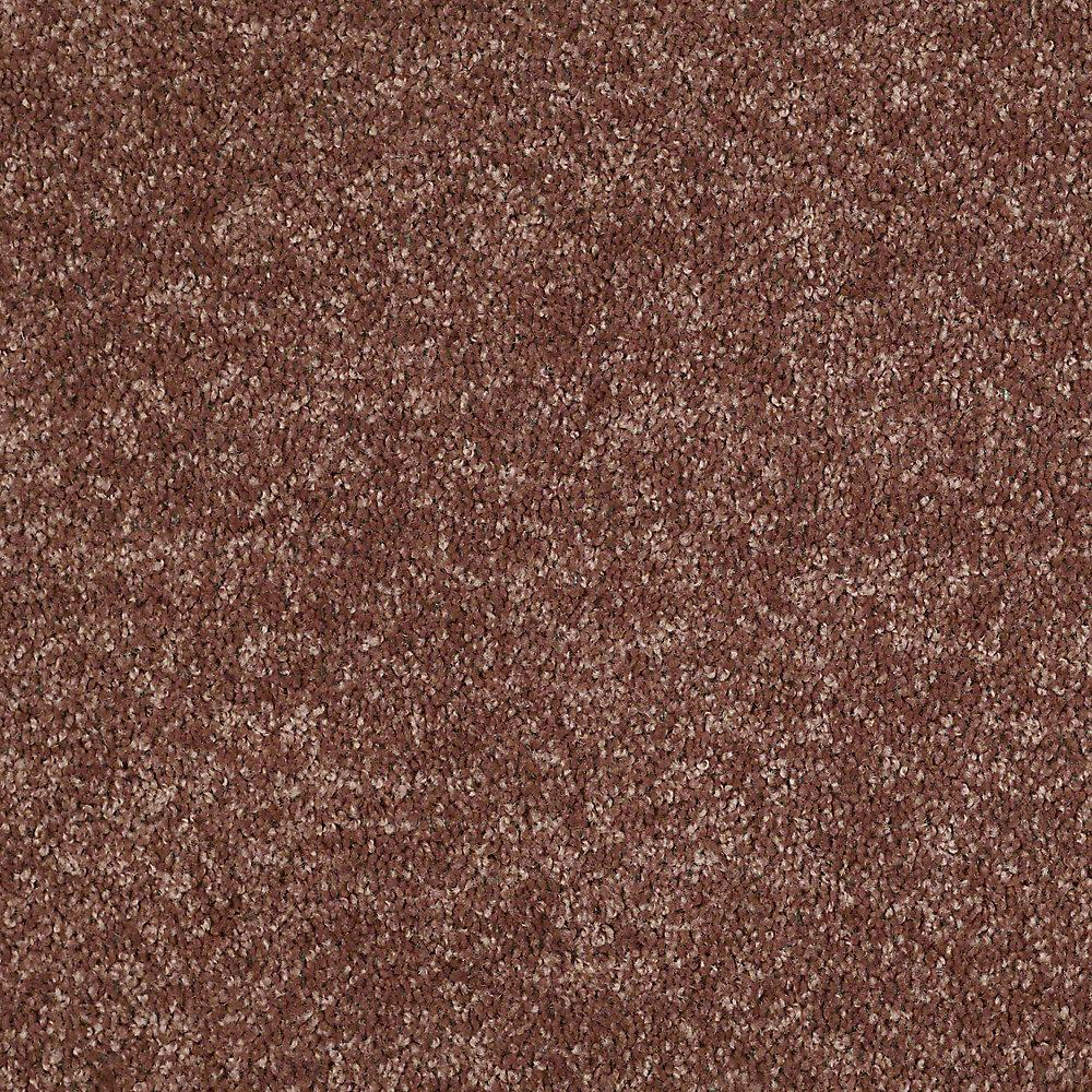 Alpine - Color Kindness Texture 15 ft. Carpet