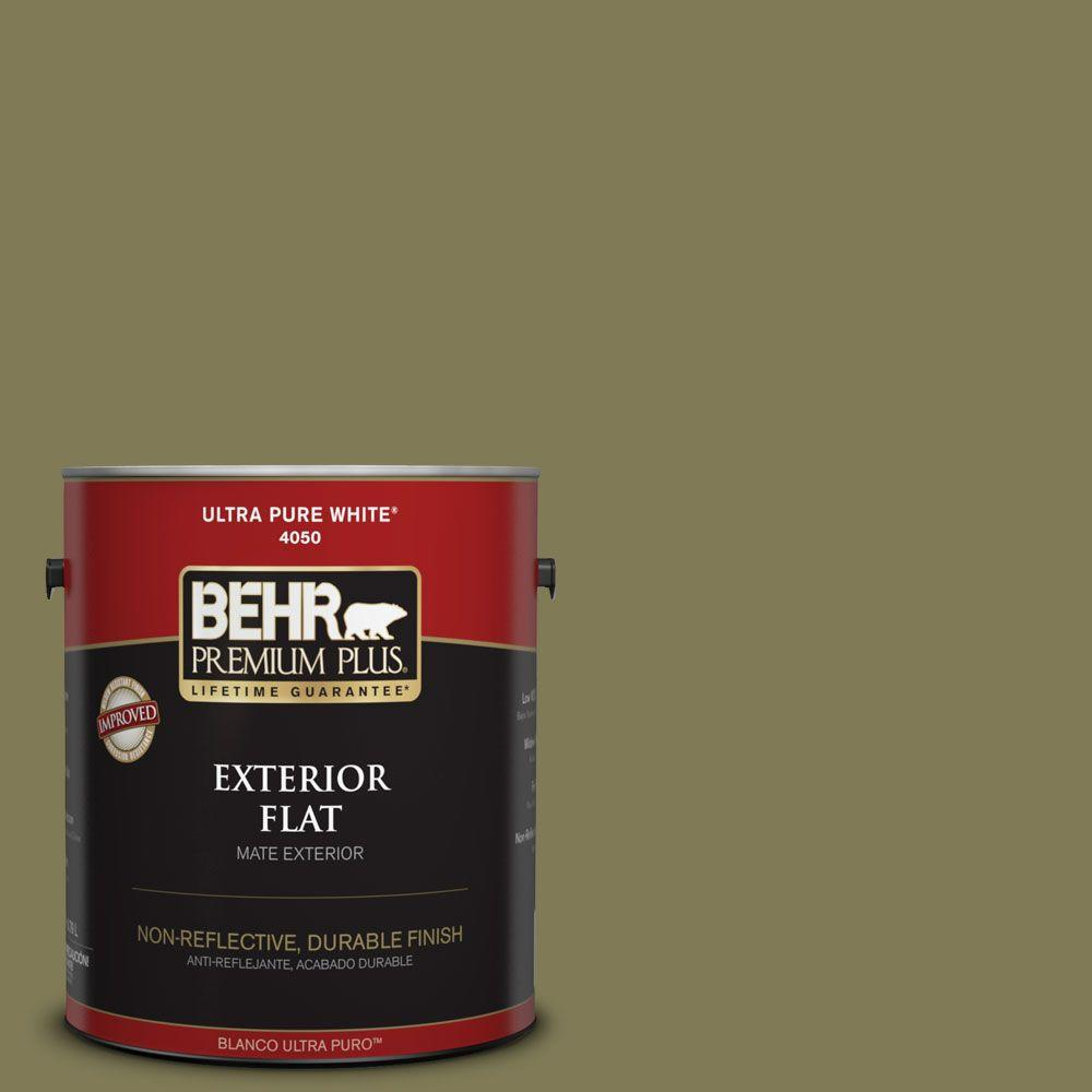 Home Decorators Collection 1-gal. #HDC-AC-17 Meadowland Flat Exterior Paint