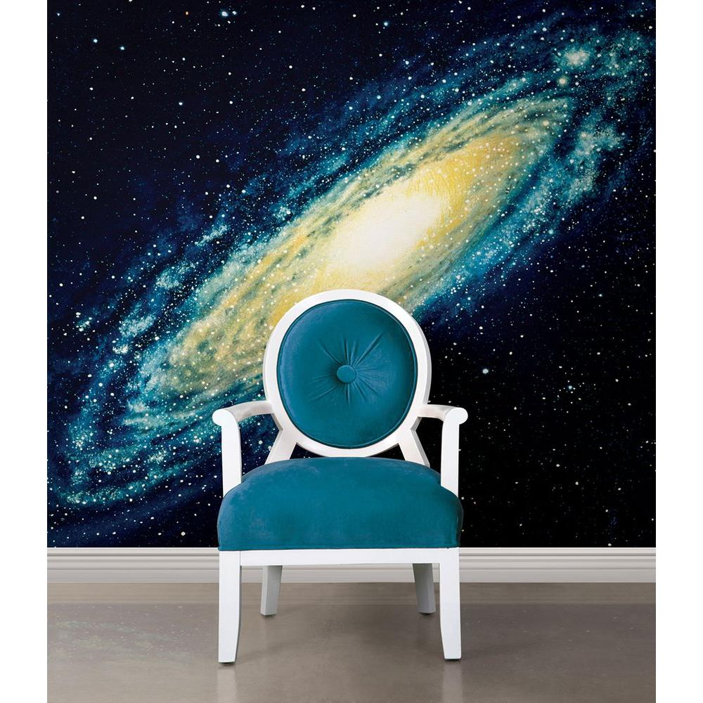 National Geographic 72 in. H x 72 in. W Galaxy Wall