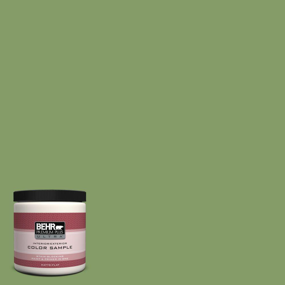 8 oz. #M370-5 Agave Plant Interior/Exterior Paint Sample
