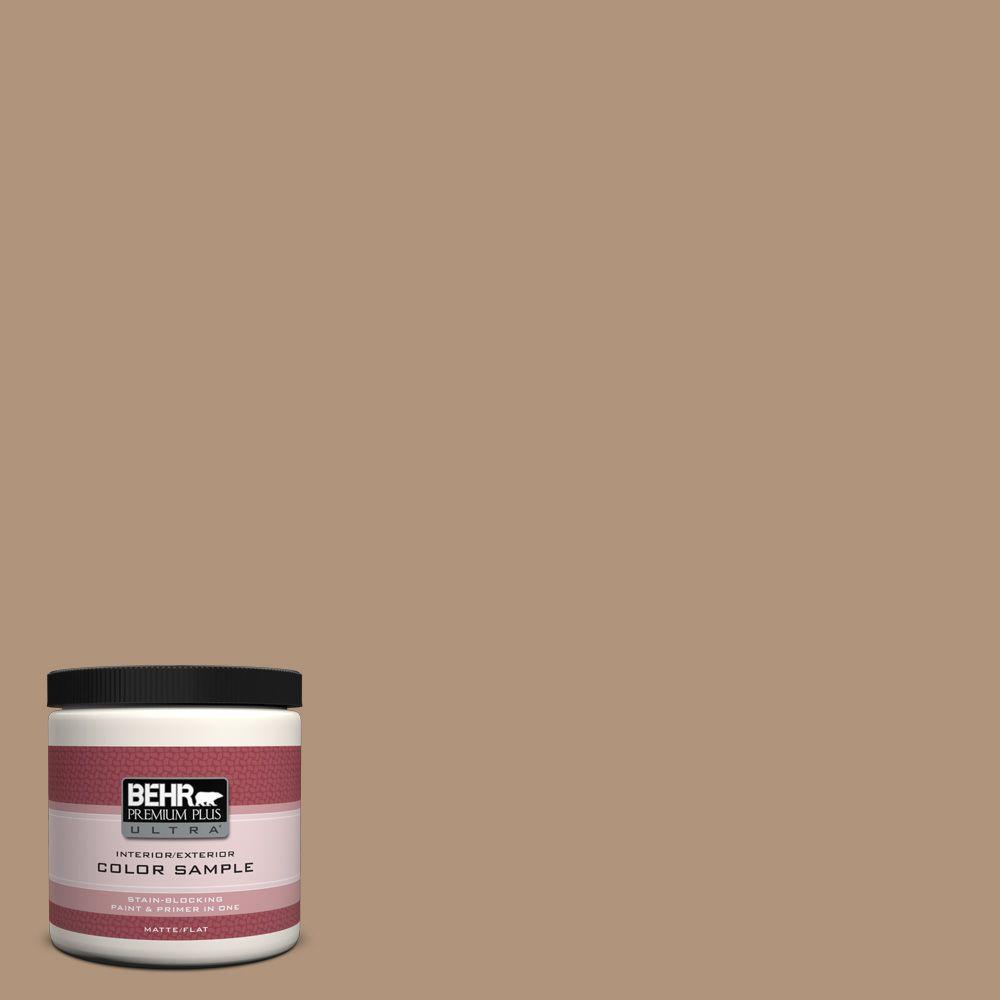 8 oz. Home Decorators Collection Nomadic Interior/Exterior Paint Sample