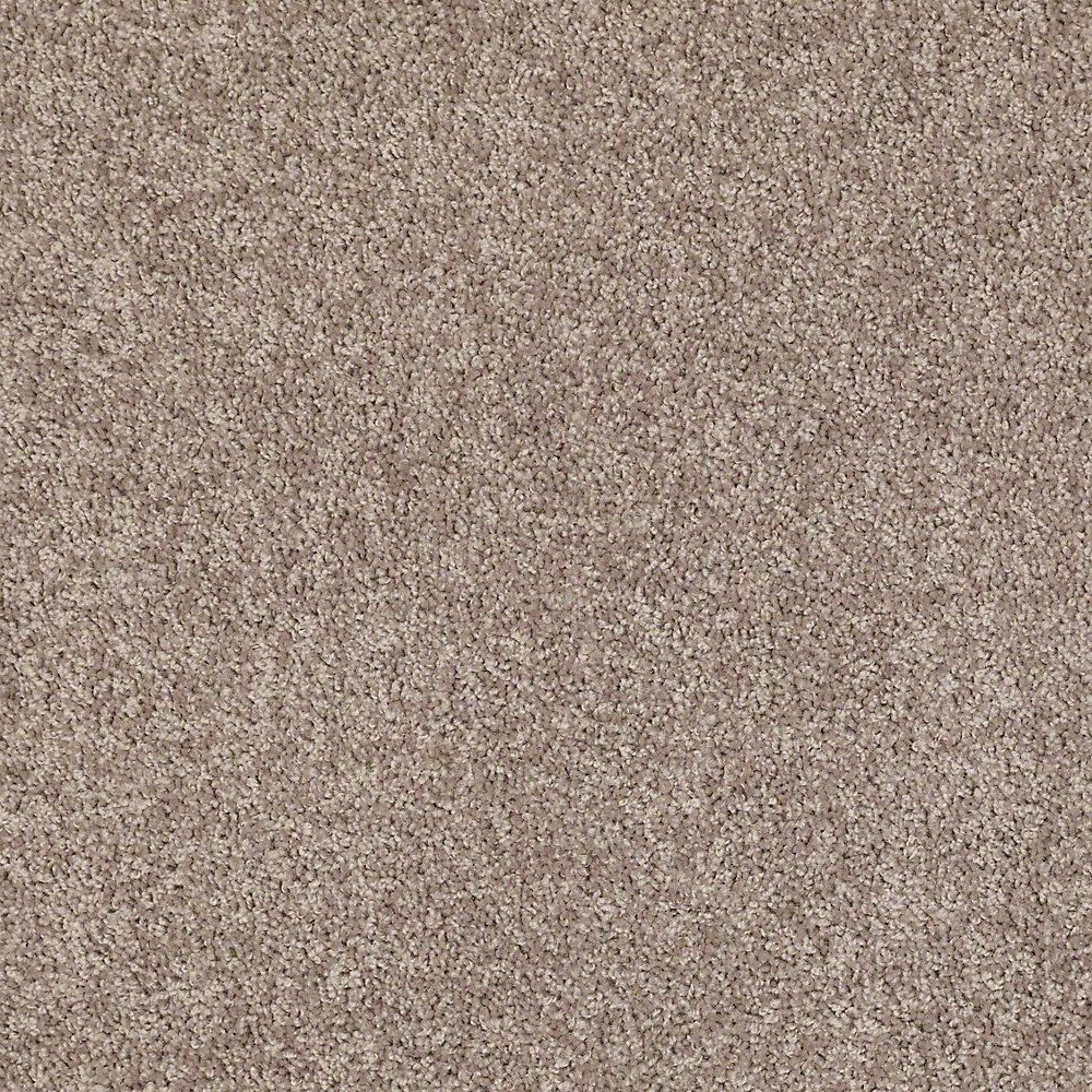 Trafficmaster Residential Carpet Sample Palmdale I 12 In Color Sunwashed Sage 8 X