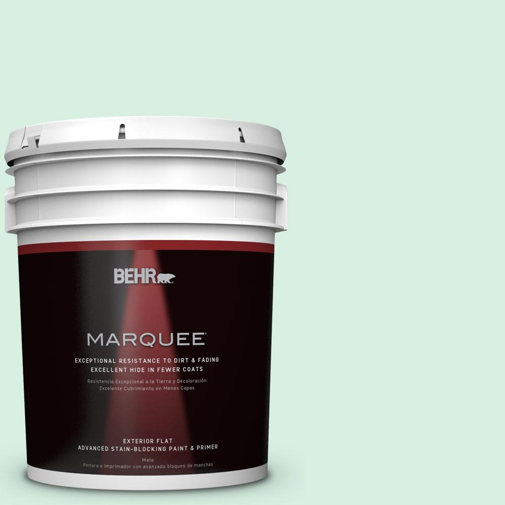 BEHR MARQUEE 5-gal. #P410-1 Pondscape Flat Exterior Paint