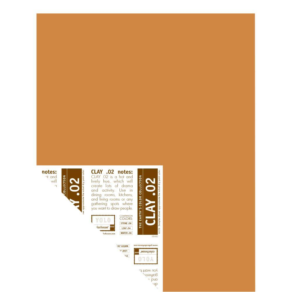 YOLO Colorhouse 12 in. x 16 in. Clay .02 Pre-Painted Big Chip Sample