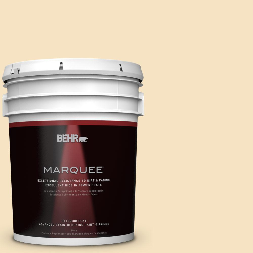 BEHR MARQUEE 5-gal. #QE-18 Moonglow Flat Exterior Paint-445005 - The Home