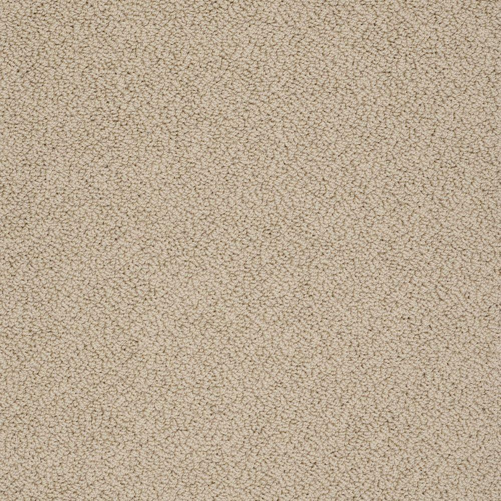 Home Decorators Collection Braidley (S) - Color Amber Glow 12 ft. Carpet