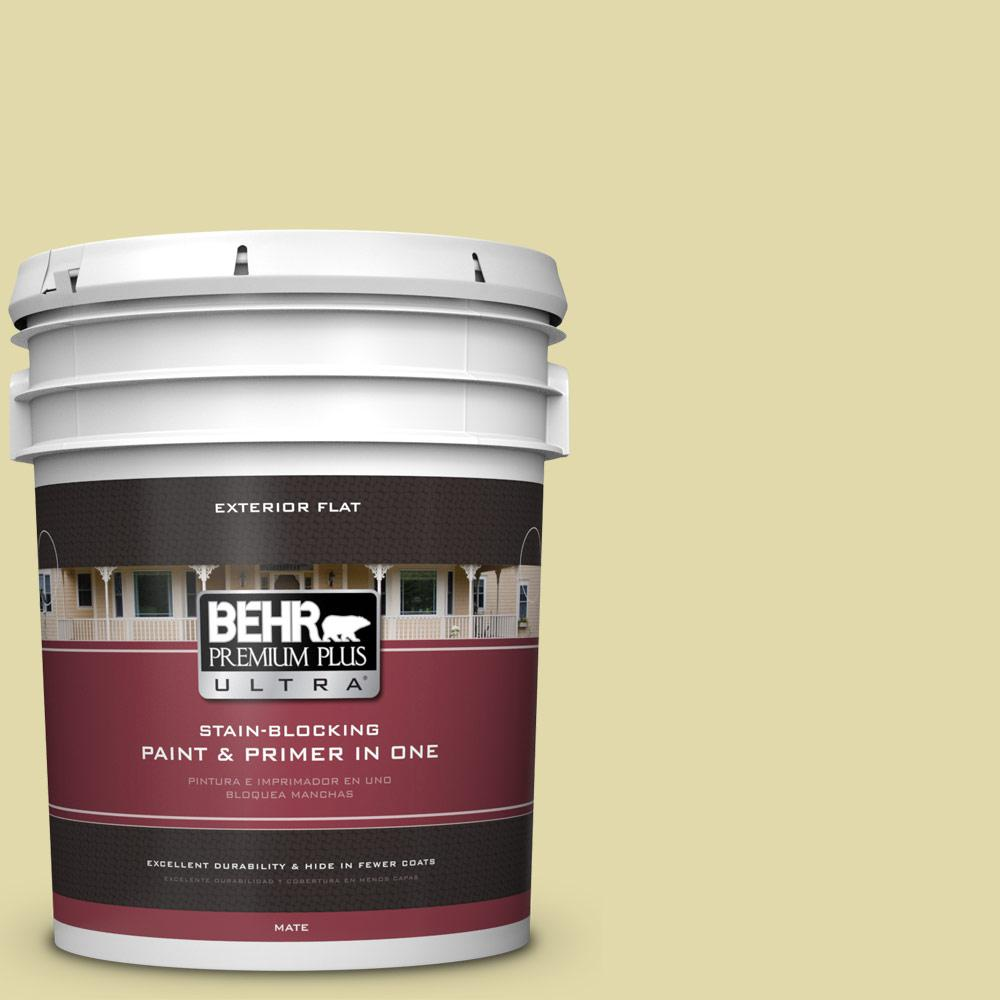 5 gal. #HDC-CT-27A Fresh Willow Flat Exterior Paint