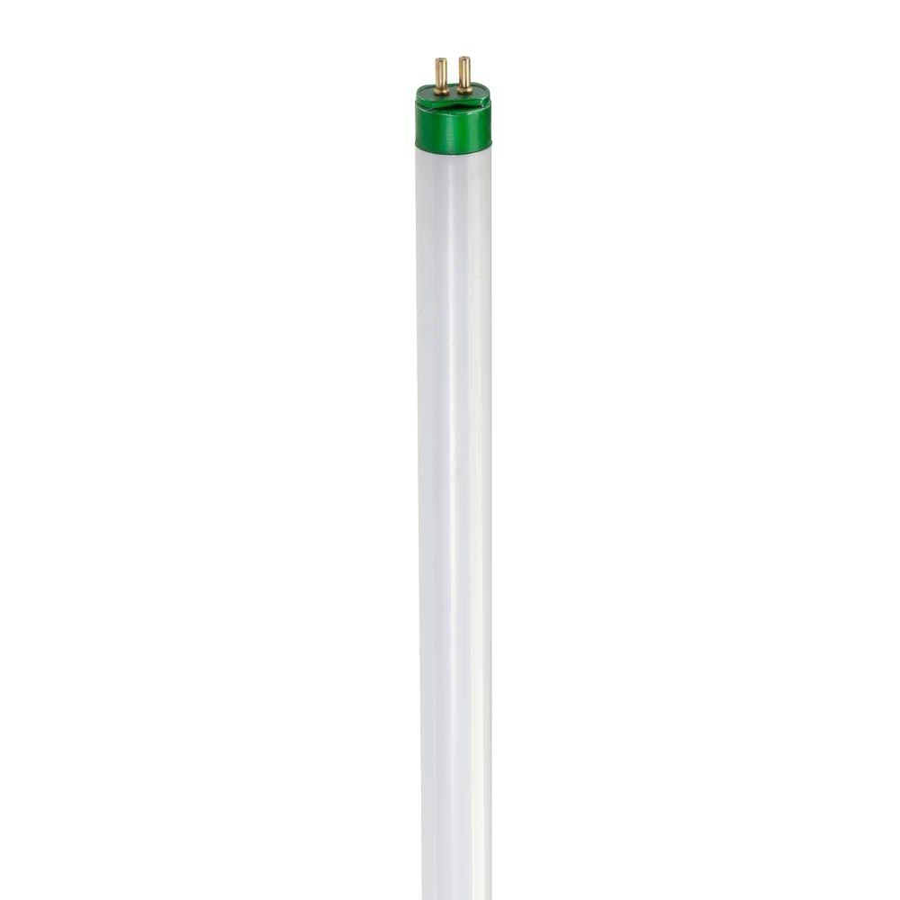5 ft. T8 40-Watt Cool White (4100K) Alto II Linear Fluorescent