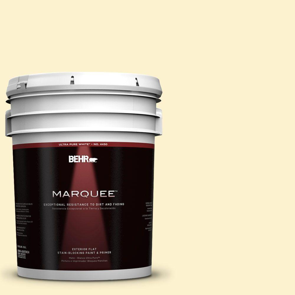BEHR MARQUEE 5-gal. #380C-2 Desert Lily Flat Exterior Paint