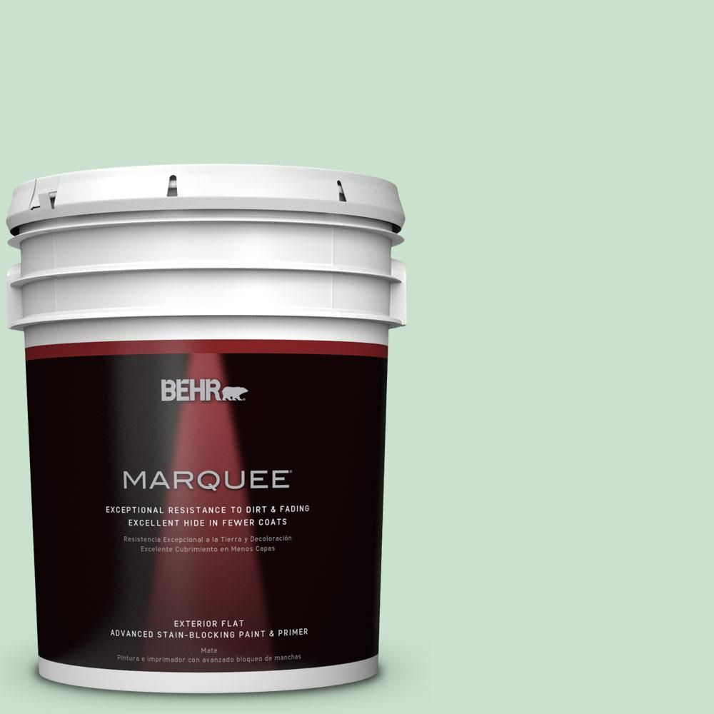 BEHR MARQUEE 5-gal. #M410-2 Wishful Green Flat Exterior Paint
