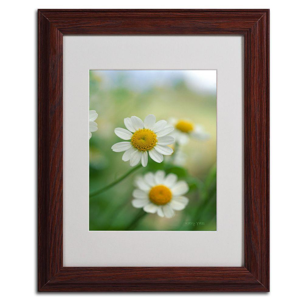 11 in. x 14 in. Chamomile Matted Framed Art