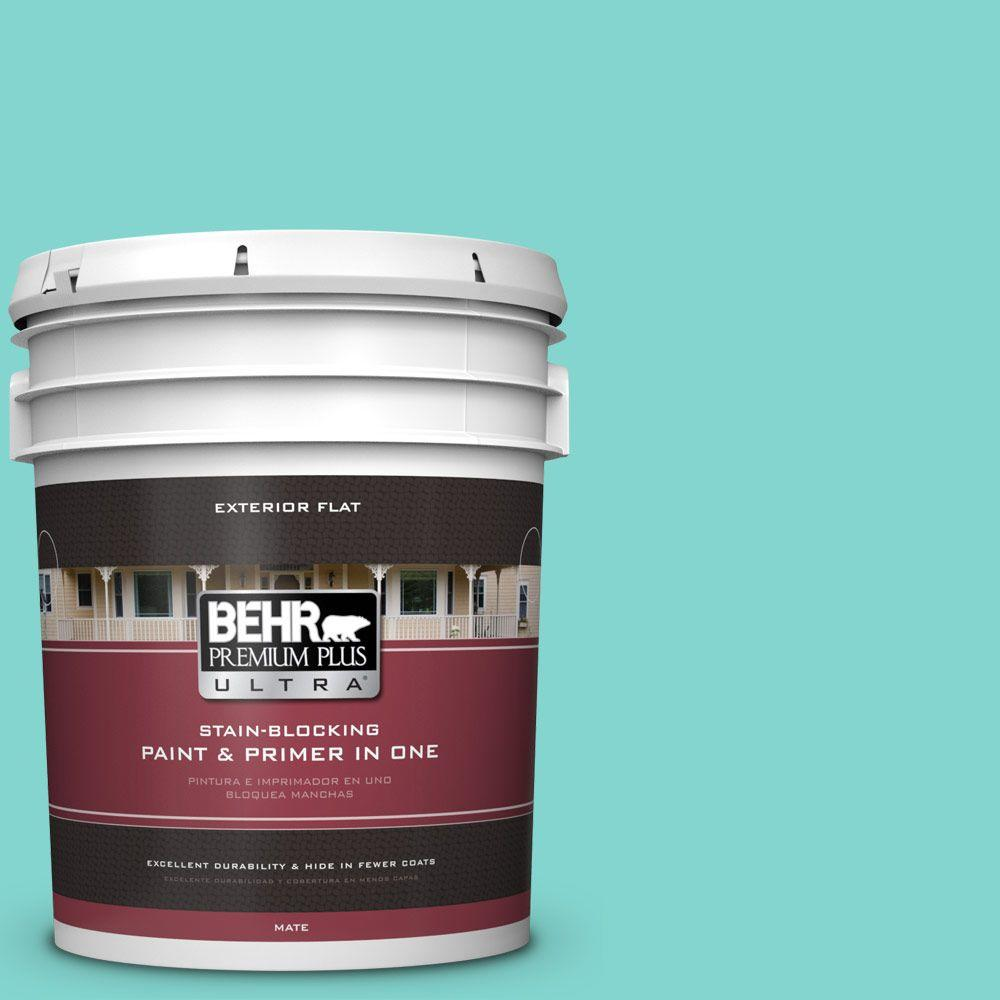 Home Decorators Collection 5-gal. #HDC-MD-09 Island Oasis Flat Exterior Paint