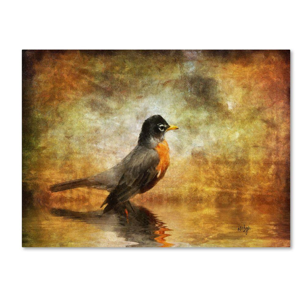 14 in. x 19 in. The Robin Canvas Art
