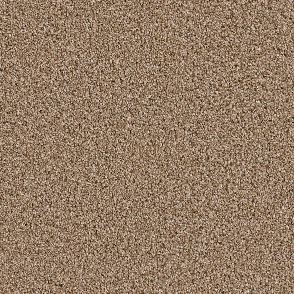 Palace II - Color Grand Forks Texture 12 ft. Carpet
