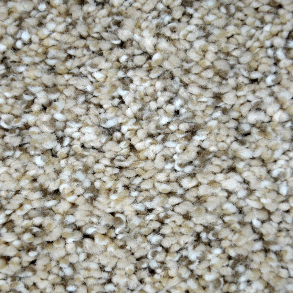 Lifeproof Carpet Sample Graceful Style Ii Color