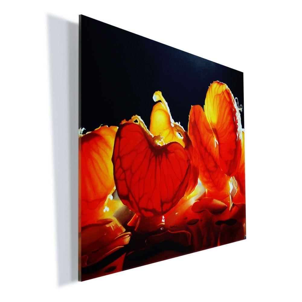 "Trademark Fine Art 18 in. x 24 in. ""Mandarin Orange"" by Cecile Baird Printed Acrylic Wall Art"
