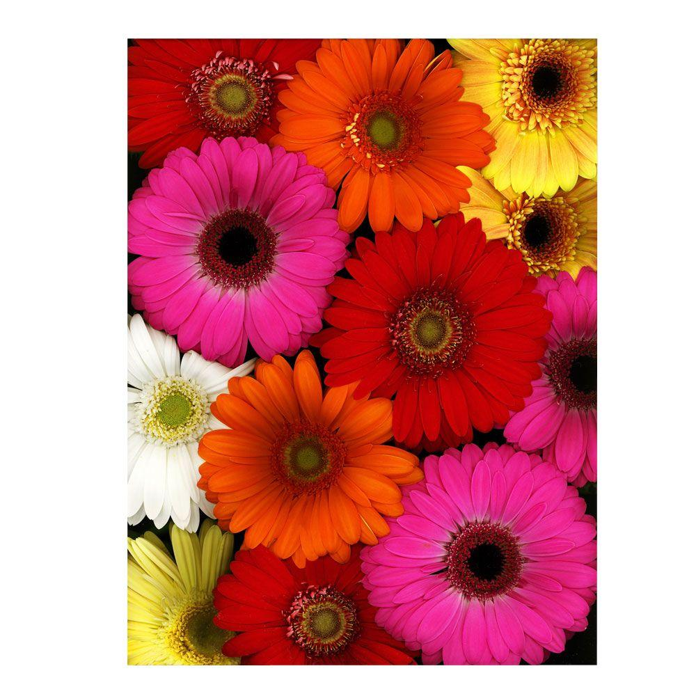 24 in. x 32 in. Flowers Canvas Art Ready to Hang