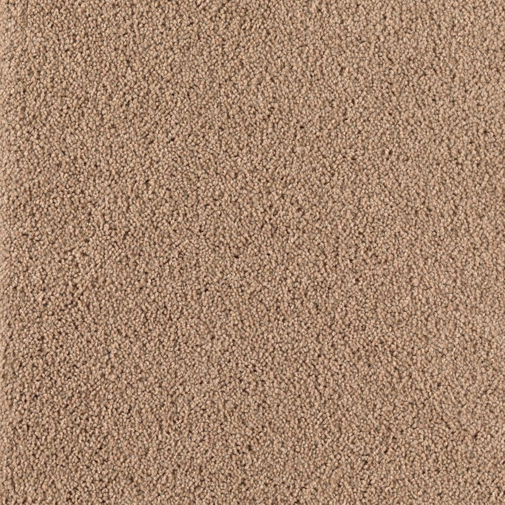 TrafficMASTER Inglewood - Color Rich Maple 12 ft. Carpet-0468D-26-12 - The