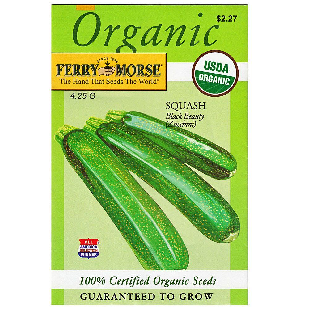 Ferry-Morse Squash Black Beauty (Zucchini) Seed-3124 - The Home Depot