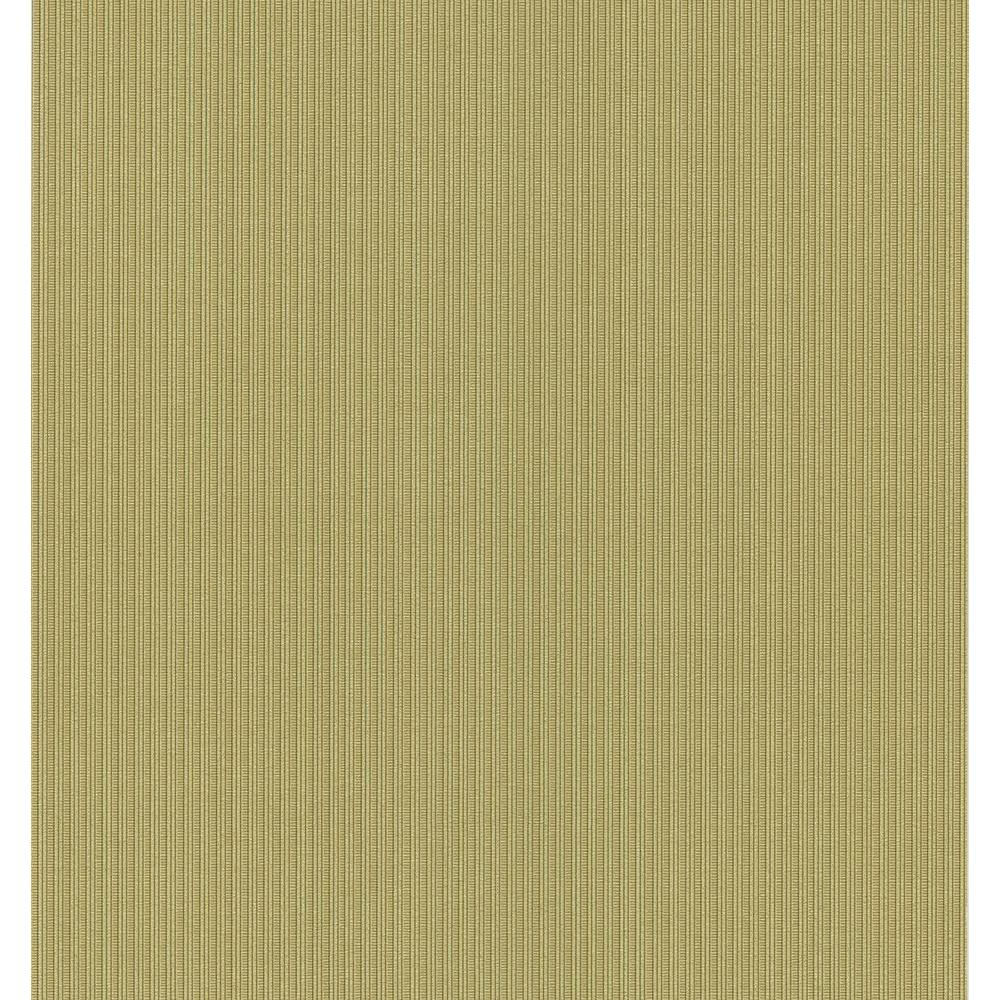 National Geographic 56 sq. ft. Pin Stripe Wallpaper-NG63882 - The Home