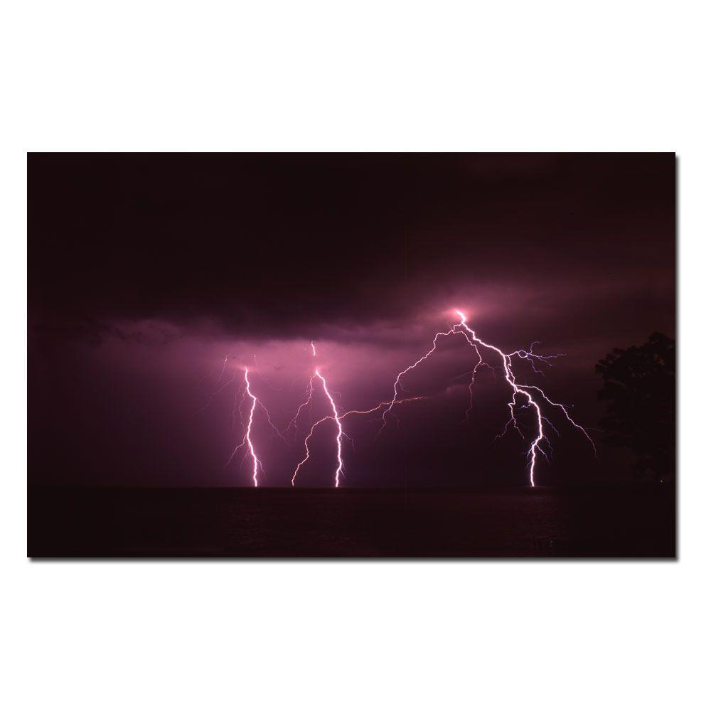 24 in. x 16 in. Lake Lightning Canvas Art