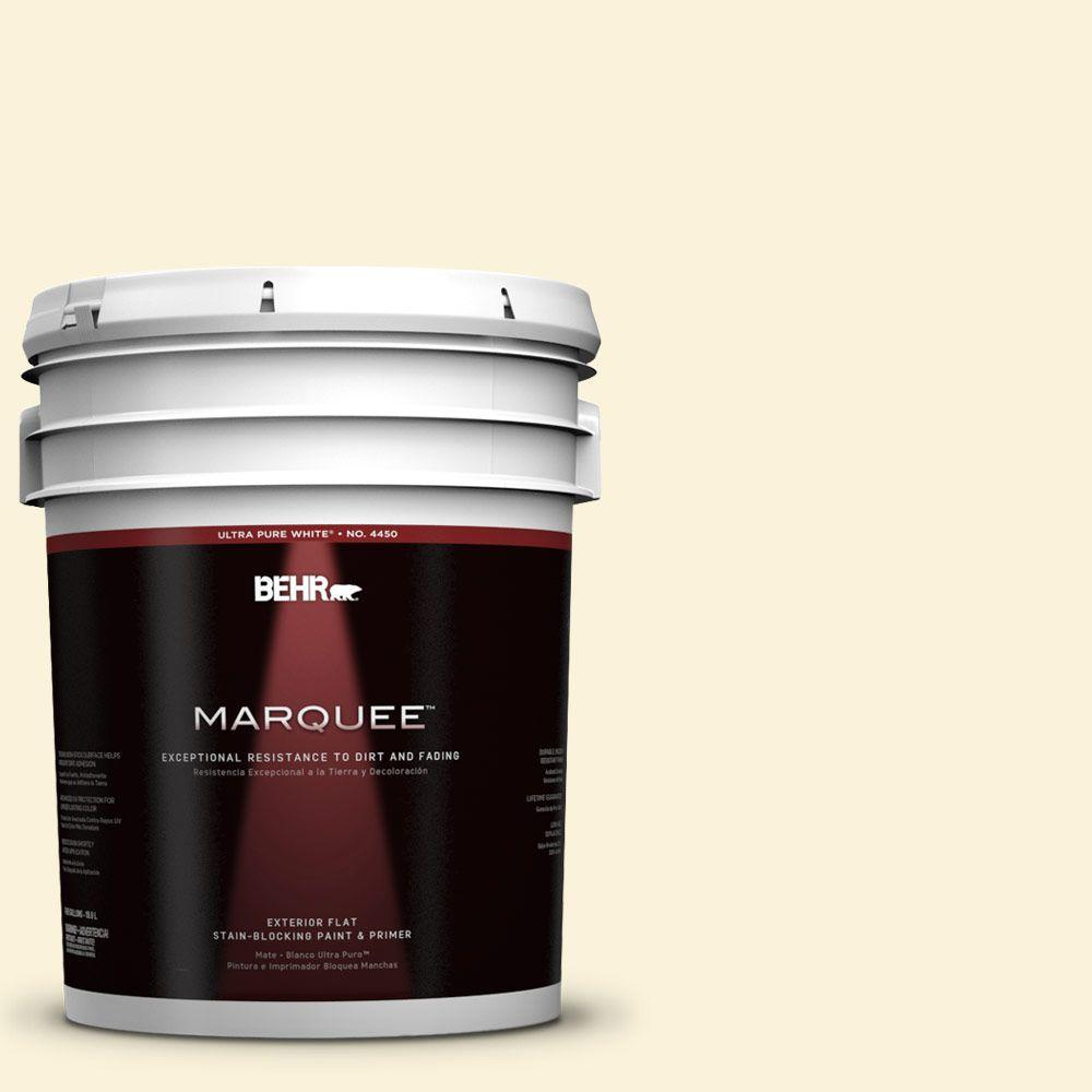 BEHR MARQUEE 5-gal. #380C-1 Sun Glint Flat Exterior Paint-445005 - The