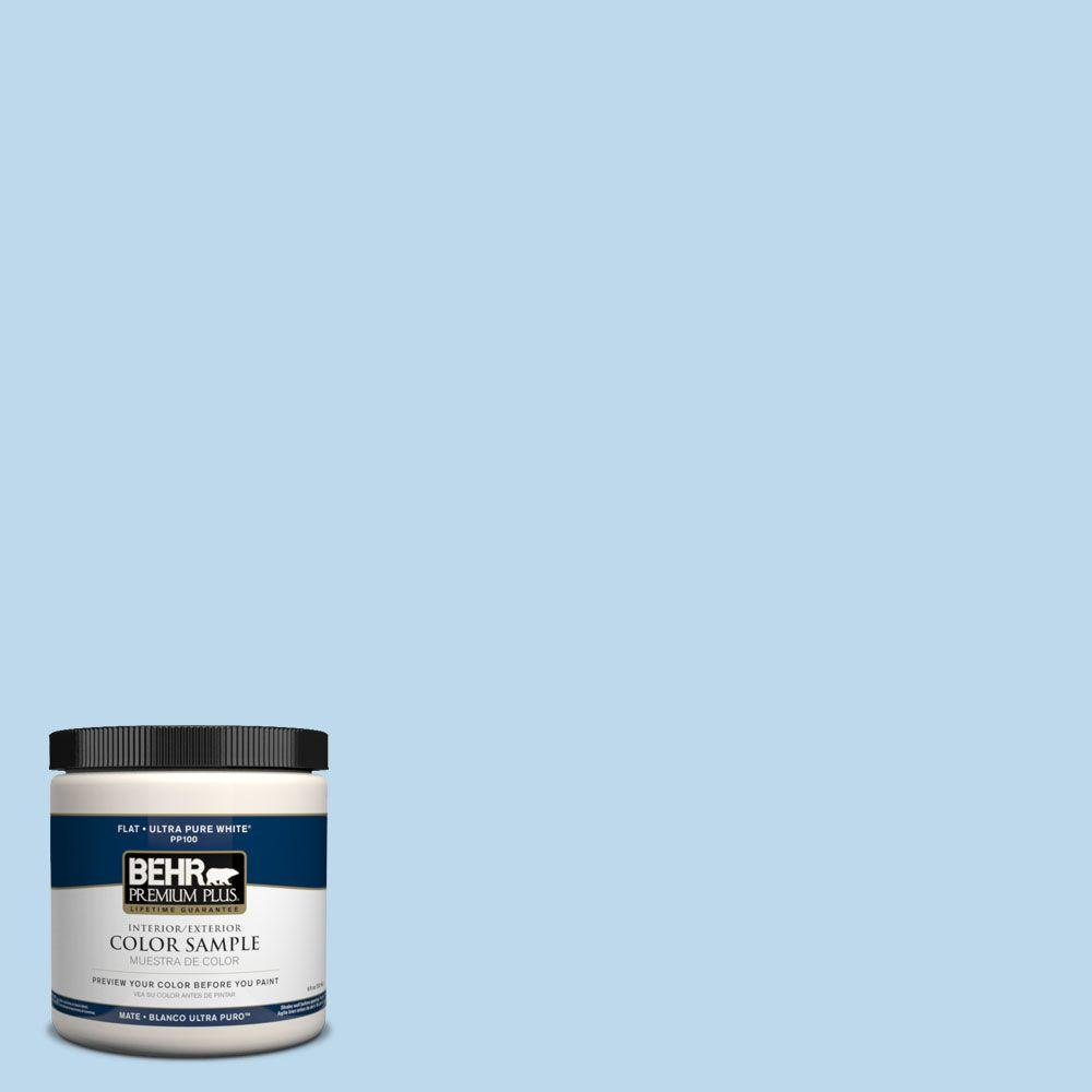 8 oz. #PPH-48 Algodon Azul Interior/Exterior Paint Sample