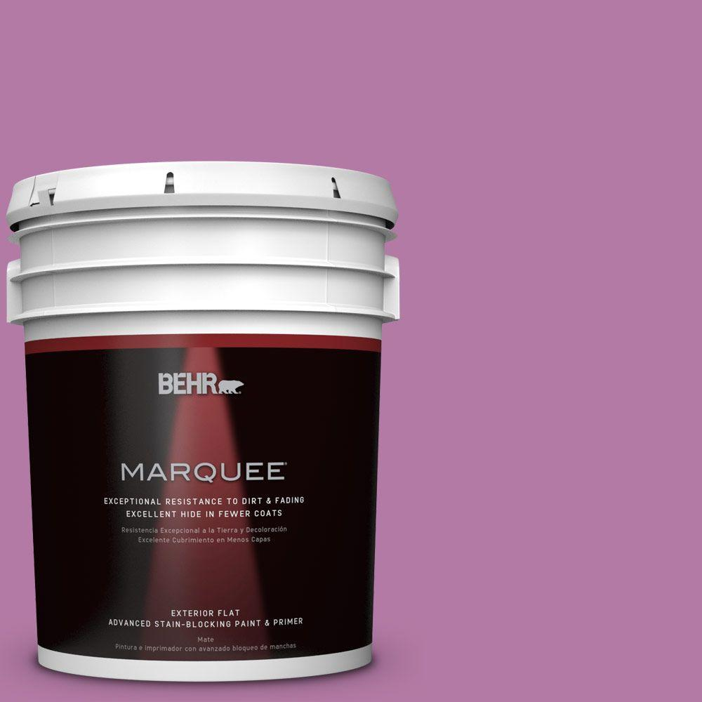 BEHR MARQUEE 5 gal. #HDC-SP16-11 Cactus Flower Flat Exterior Paint-445405 -