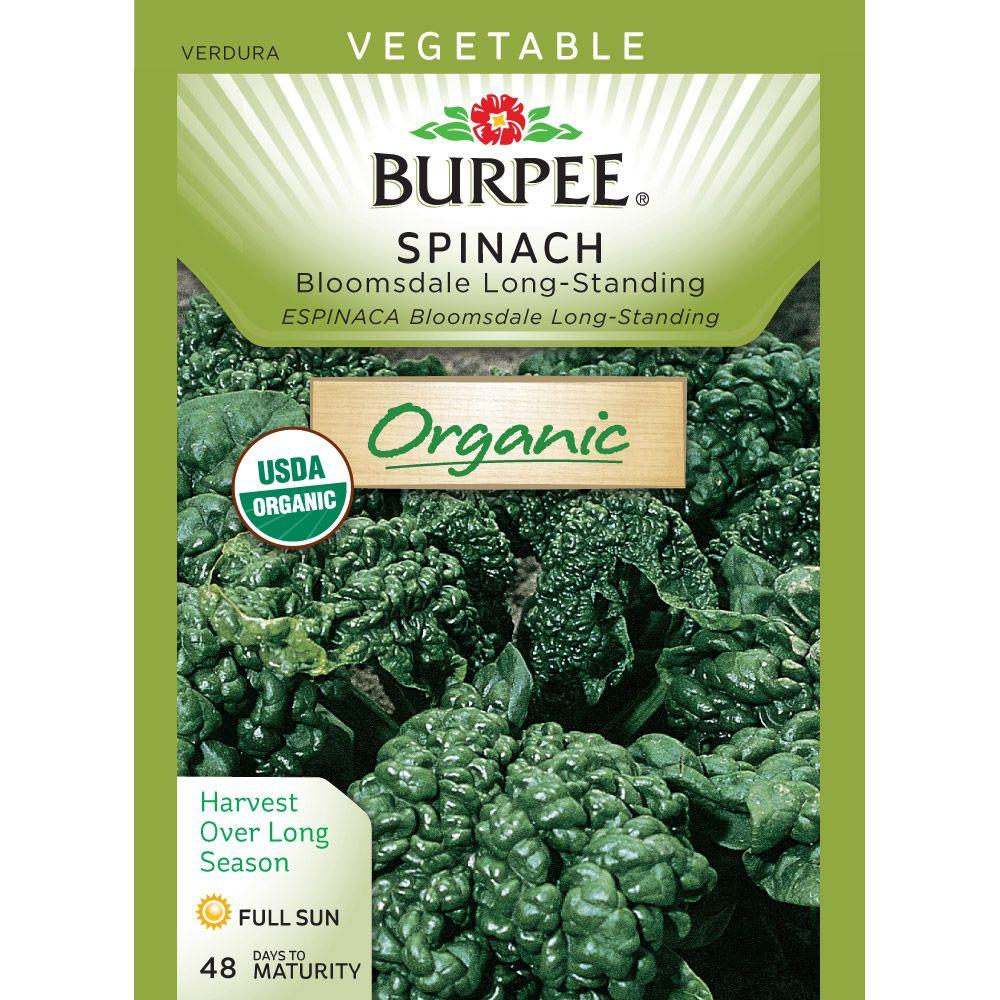 Burpee Organic Spinach Bloomsdale Long-Standing Seed-60564 - The Home Depot