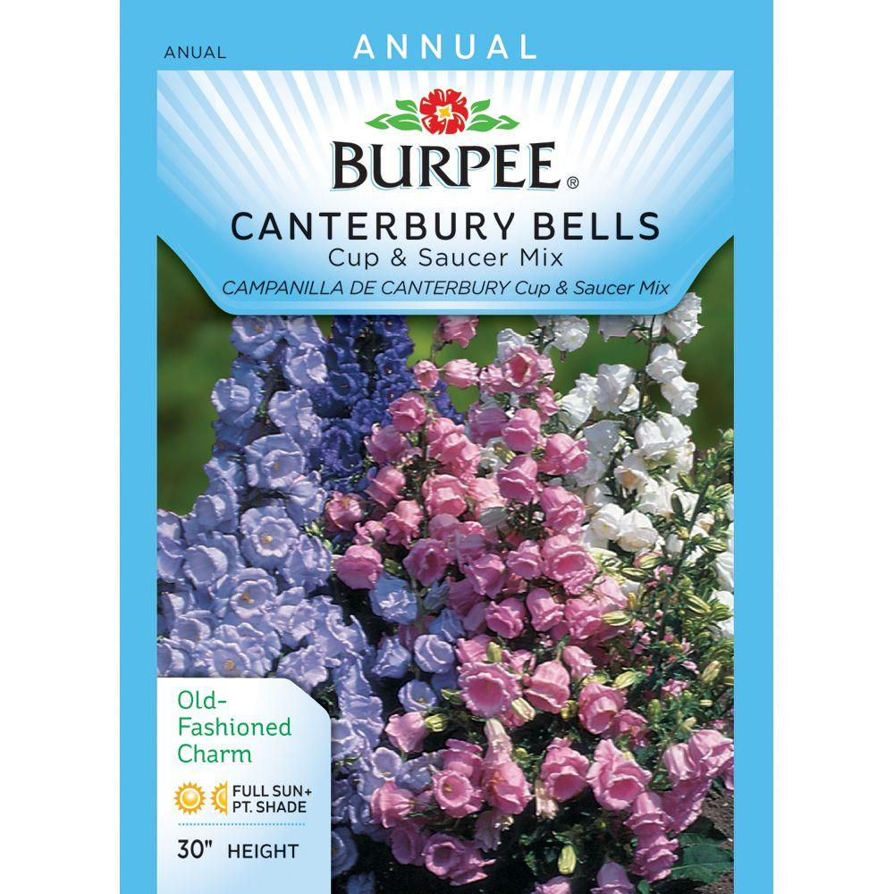 Burpee Canterbury Bells, Cup and Saucer Mix Seed-36761 - The Home