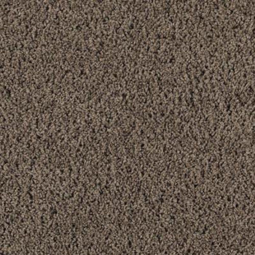 Carpet Sample - Ashcraft II - Color Peat Moss Texture 8 in. x 8 in.