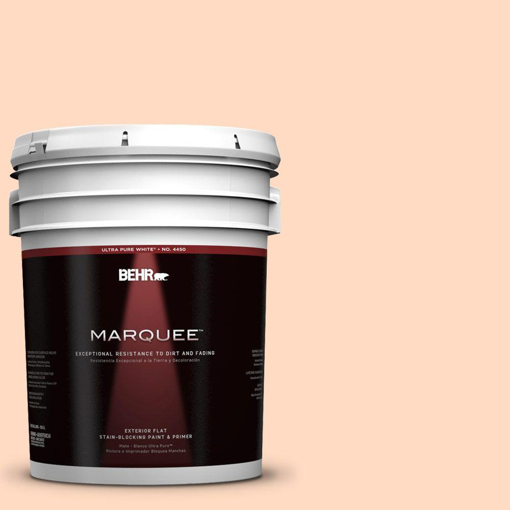 BEHR MARQUEE 5-gal. #250A-3 Whispering Peach Flat Exterior Paint-445005 - The