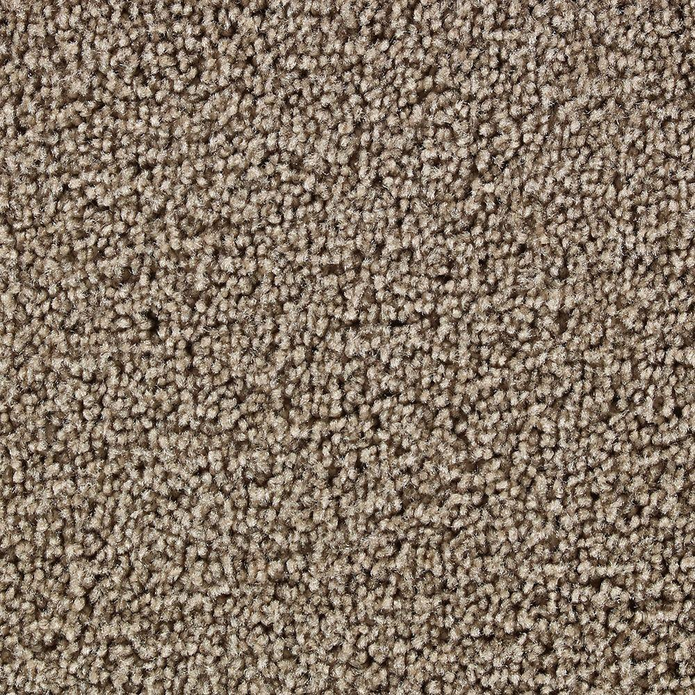 Martha Stewart Living Beechwood Snail Shell - 6 in. x 9 in. Take Home Carpet Sample-DISCONTINUED