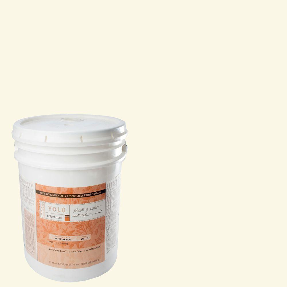 YOLO Colorhouse 5-gal. Air .01 Flat Interior Paint