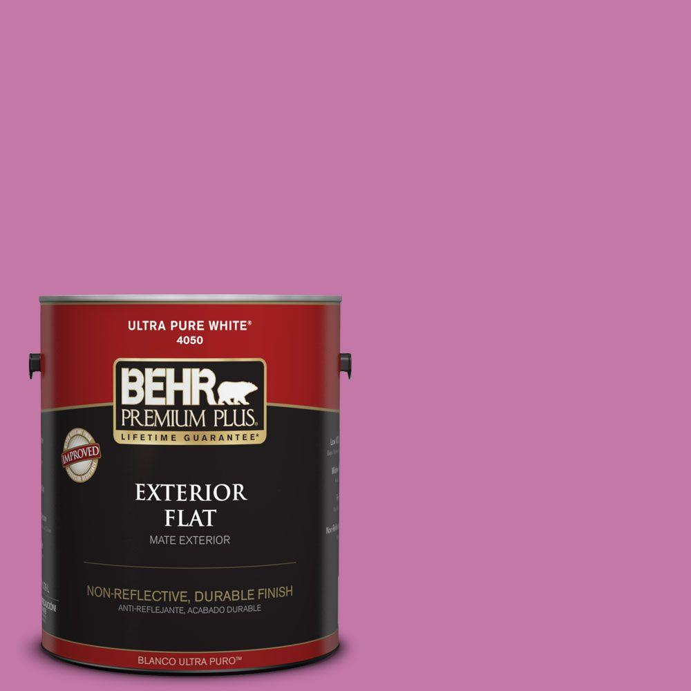 1-gal. #680B-5 Strawberry Freeze Flat Exterior Paint