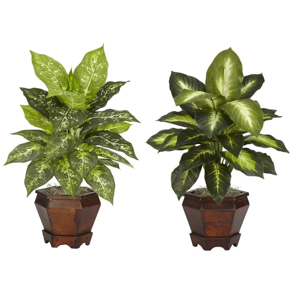 20.5 in. H Green Dieffenbachia with Wood Vase Silk Plant (Set