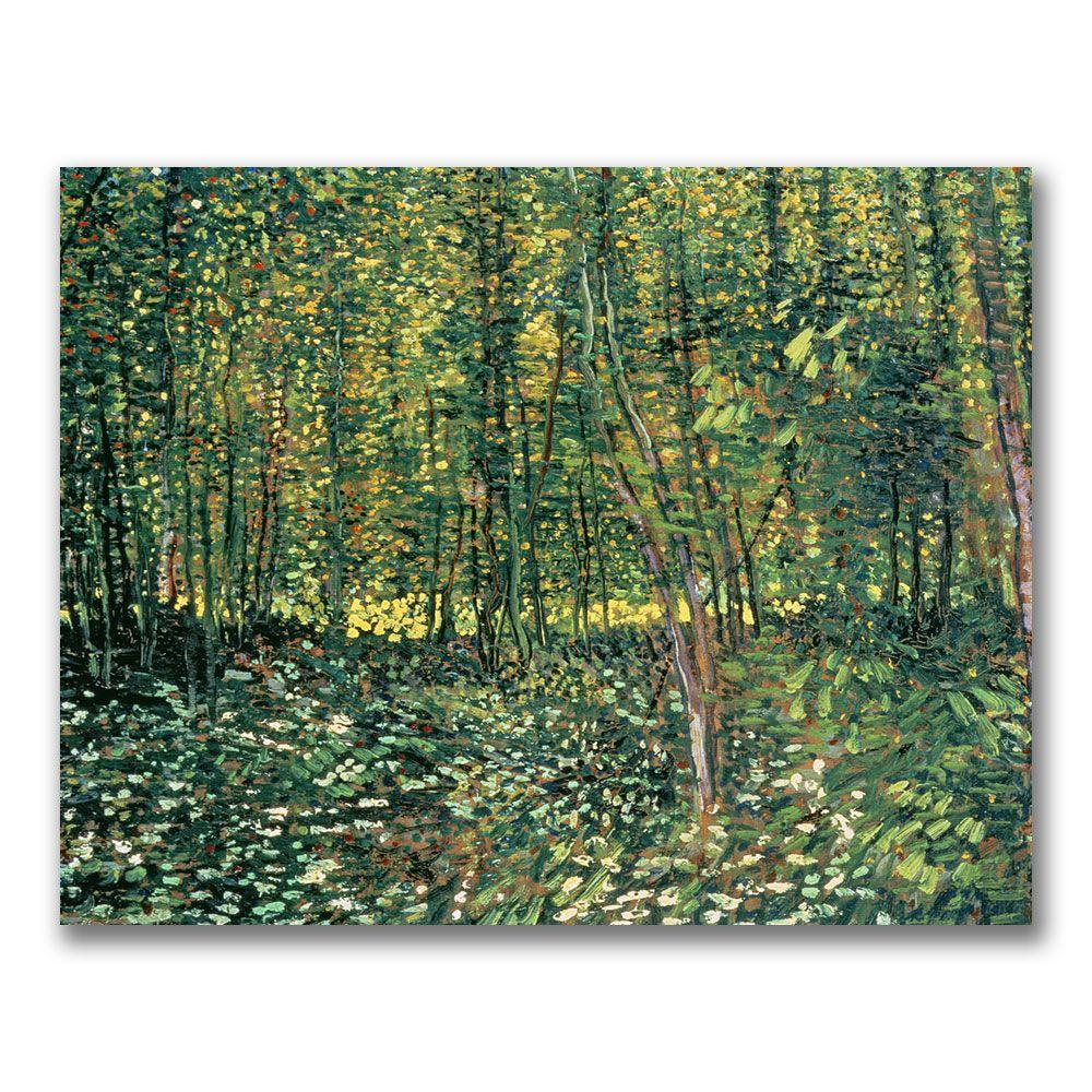 Trademark Fine Art 35 in. x 47 in. Trees and Undergrowth,