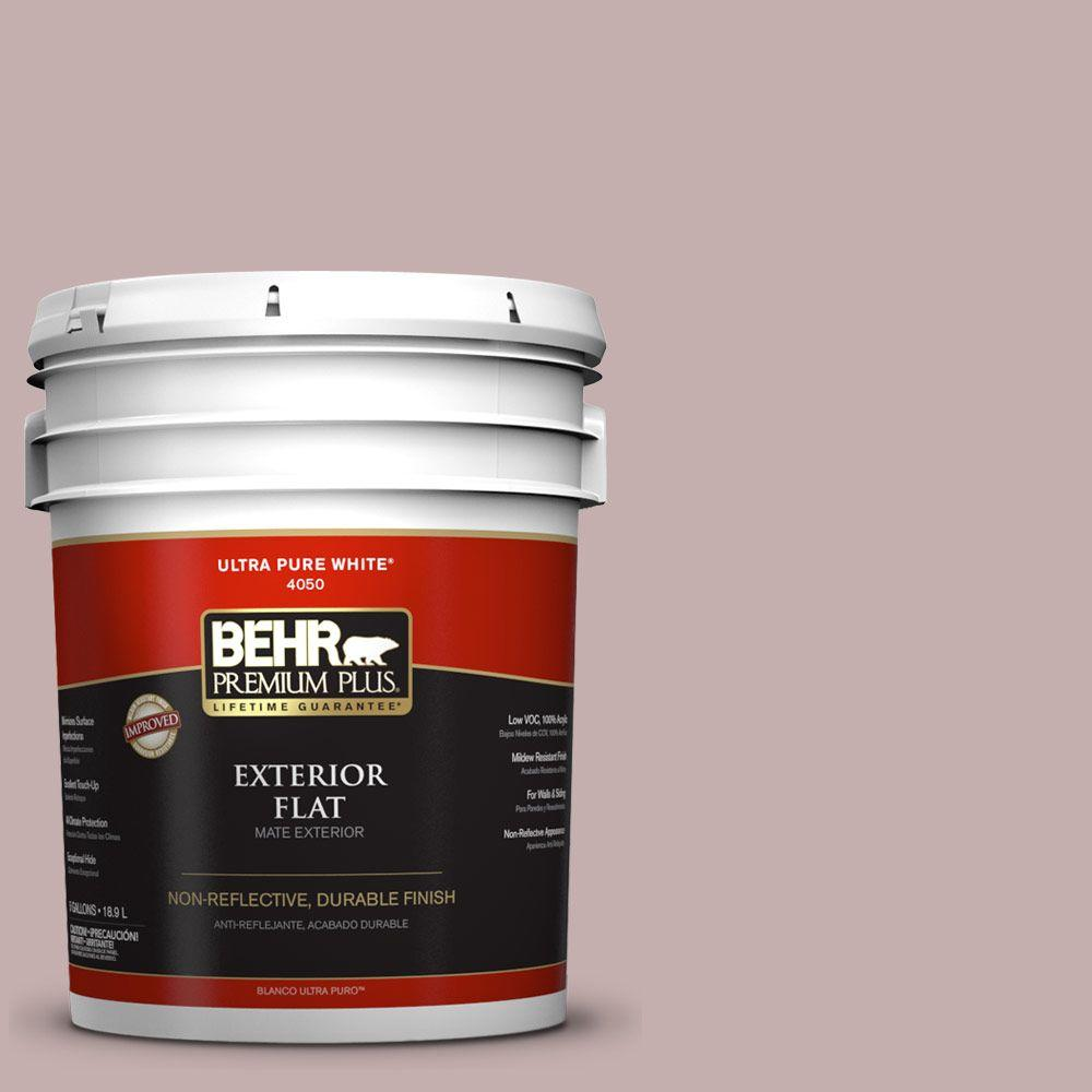 5-gal. #120E-3 Subdued Hue Flat Exterior Paint