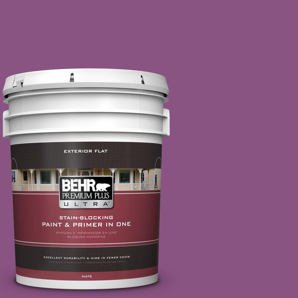 Home Decorators Collection 5-gal. #HDC-MD-07 Dynamic Magenta Flat Exterior Paint