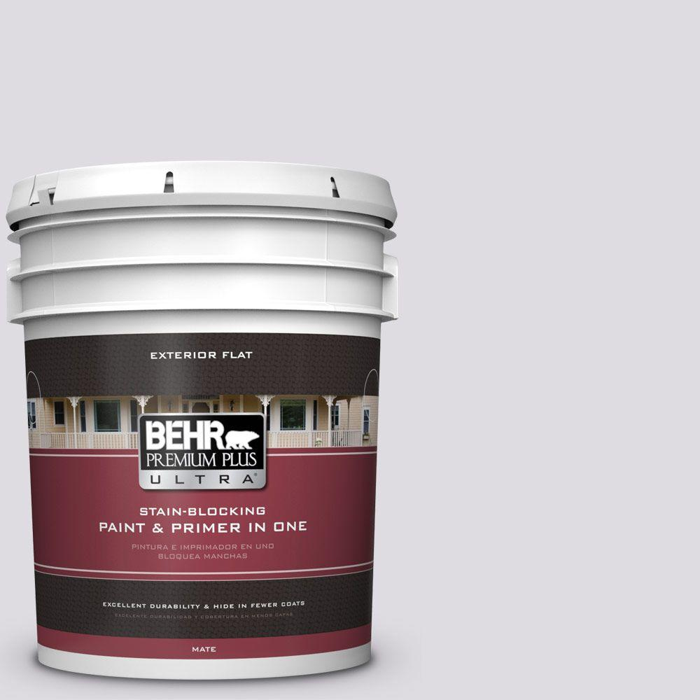 5-gal. #N100-1 Enigma Flat Exterior Paint