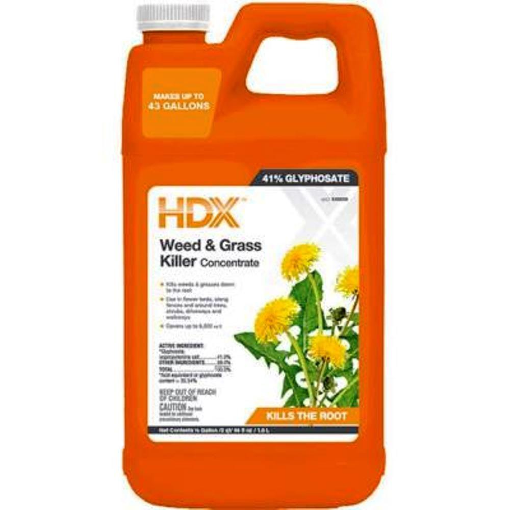 HDX 0.5 Gal. Pro Weed and Grass Killer Concentrate-058011005 - The