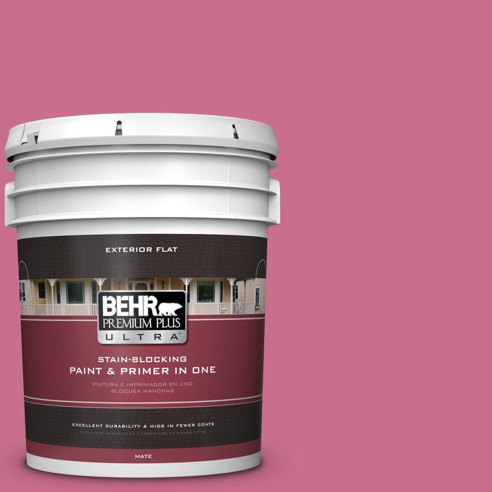 5-gal. #110B-5 Silk Ribbon Flat Exterior Paint
