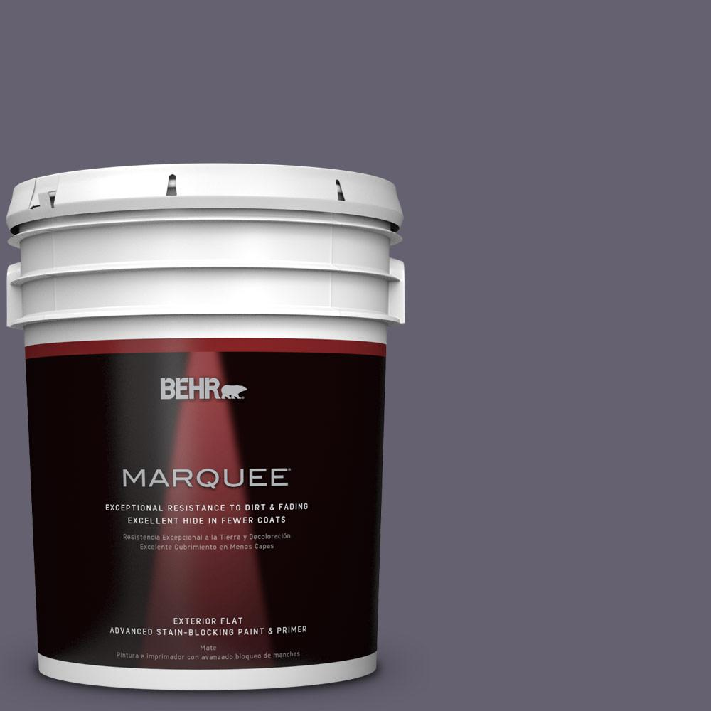 5-gal. #N560-6 Fashionista Flat Exterior Paint