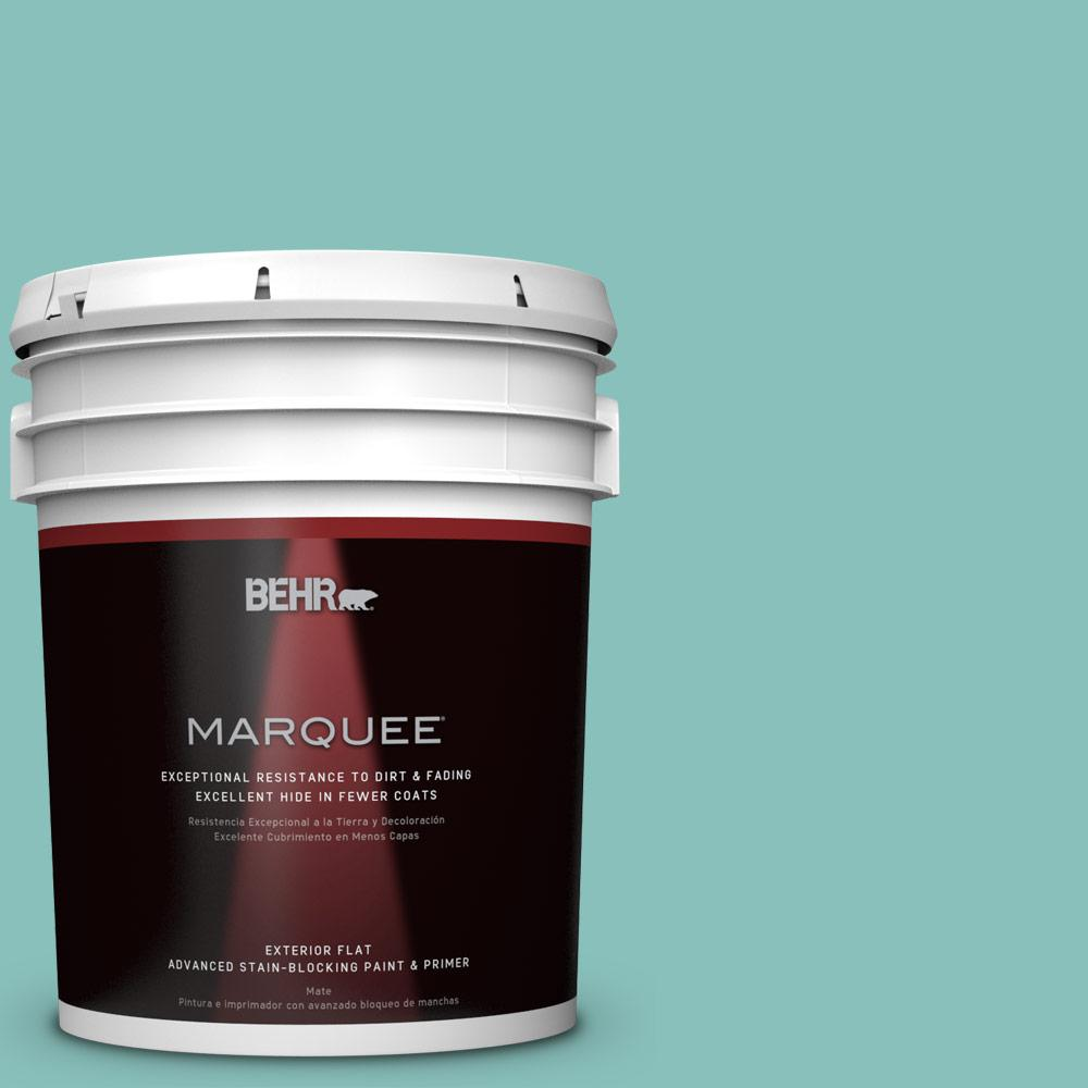 BEHR MARQUEE 5-gal. #M450-4 Undine Flat Exterior Paint-445405 - The Home
