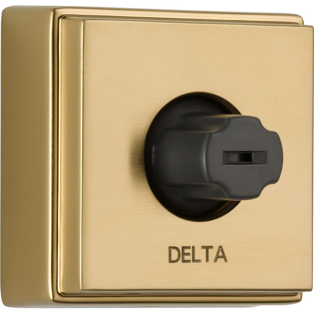 Delta Body Jet in Champagne Bronze featuring H2Okinetic