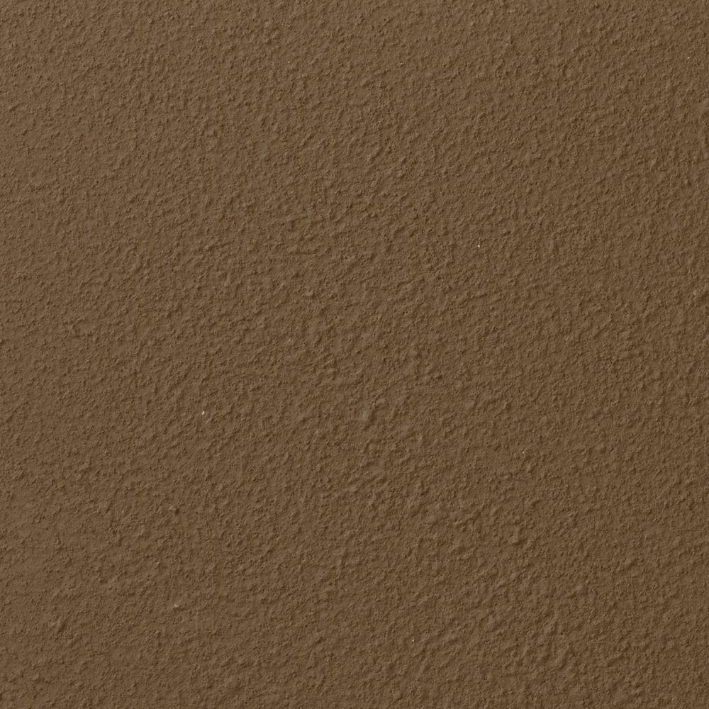 Ralph Lauren 13 in. x 19 in. #RR107 Old River Bed River Rock Specialty Paint Chip Sample